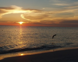 Relaxing Gulf sunset