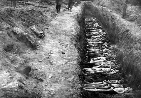 holocaust 6
